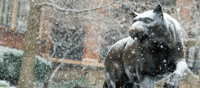 Snow on Panther Statue
